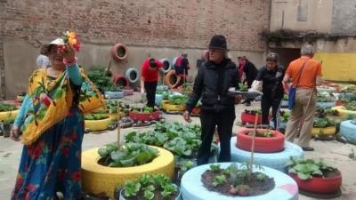 agricultura_urbana_candelaria.jpg