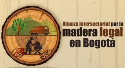 alianza_madera_legal_3.jpg