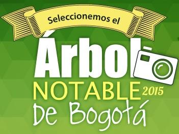 arbol_notable_1.jpg