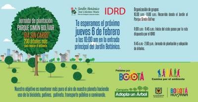 dia_sin_carro_plantacion_jbb.jpg