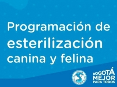 noticia-calendario-de-vacunacion-canina..jpg