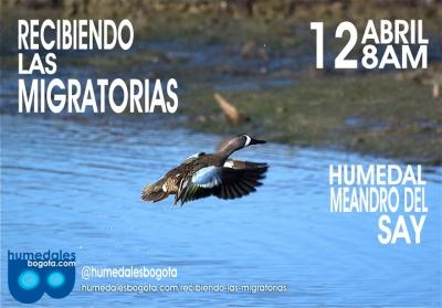 recibiendo_las_migratorias_humedales_bogot_.jpg