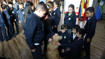 Campaña contra maltrato Animal.