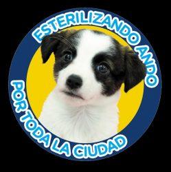 Esterilización Canina y Felina 2.019.