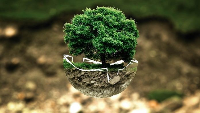 Datos Ecológicos.