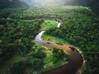 Protección Ambiental de Colombia.