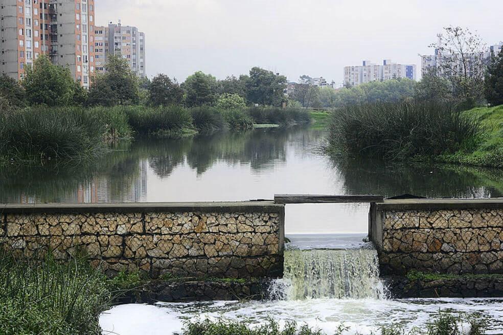 Humedal El Burro.