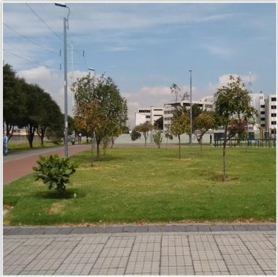bogota_un_jardin.jpg