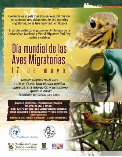 dia_mundial_aves_migratorias.jpg