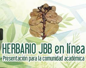 herbario_linea.jpg