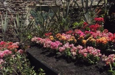 jardin_barrio_egipto.jpg