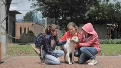 nota-adopcion-canina-26-06-2018..jpg