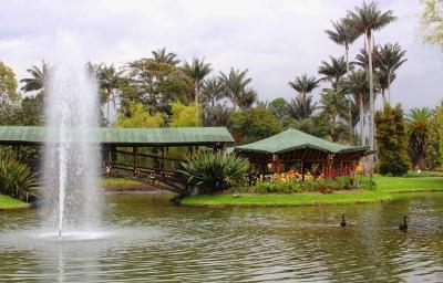 nota-jardin-botanico-15-06-2018..jpg