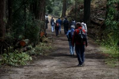 noticia-caminatas-ecologicas-sda..jpg