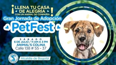 nota-petfest-04-07-2.019.jpg