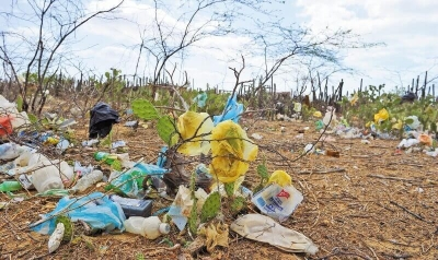 nota-proyecto-de-eliminacion-de-plasticos-07-06-2.019.jpg