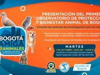 Observatorio de Protección y Bienestar Animal.