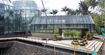 Exposición de Plantas Colombianas.