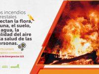 Incendios Forestales Pieza SDA