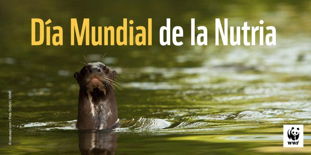 Foto WWF Latineamérica